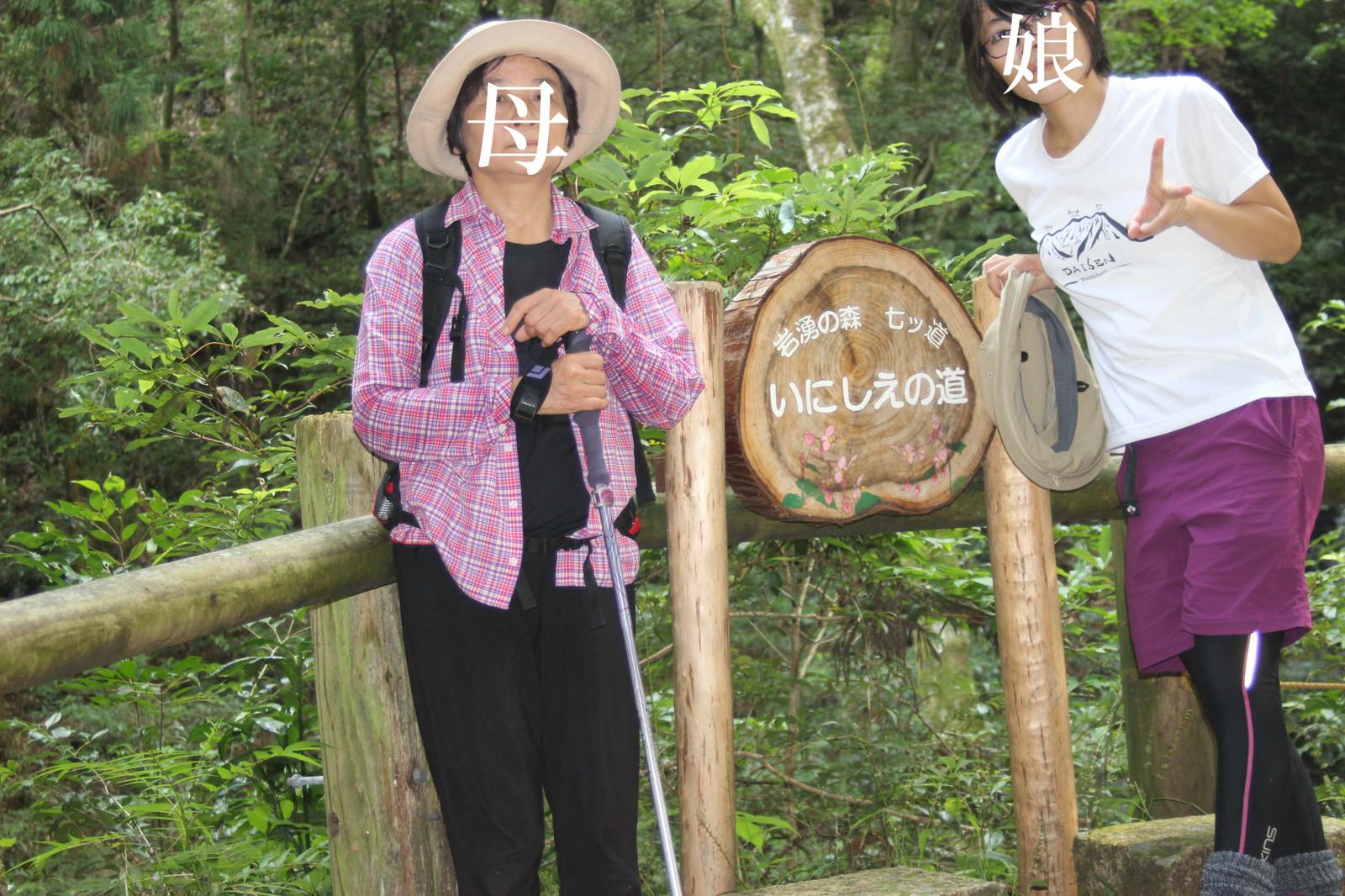 Iwawaki012q